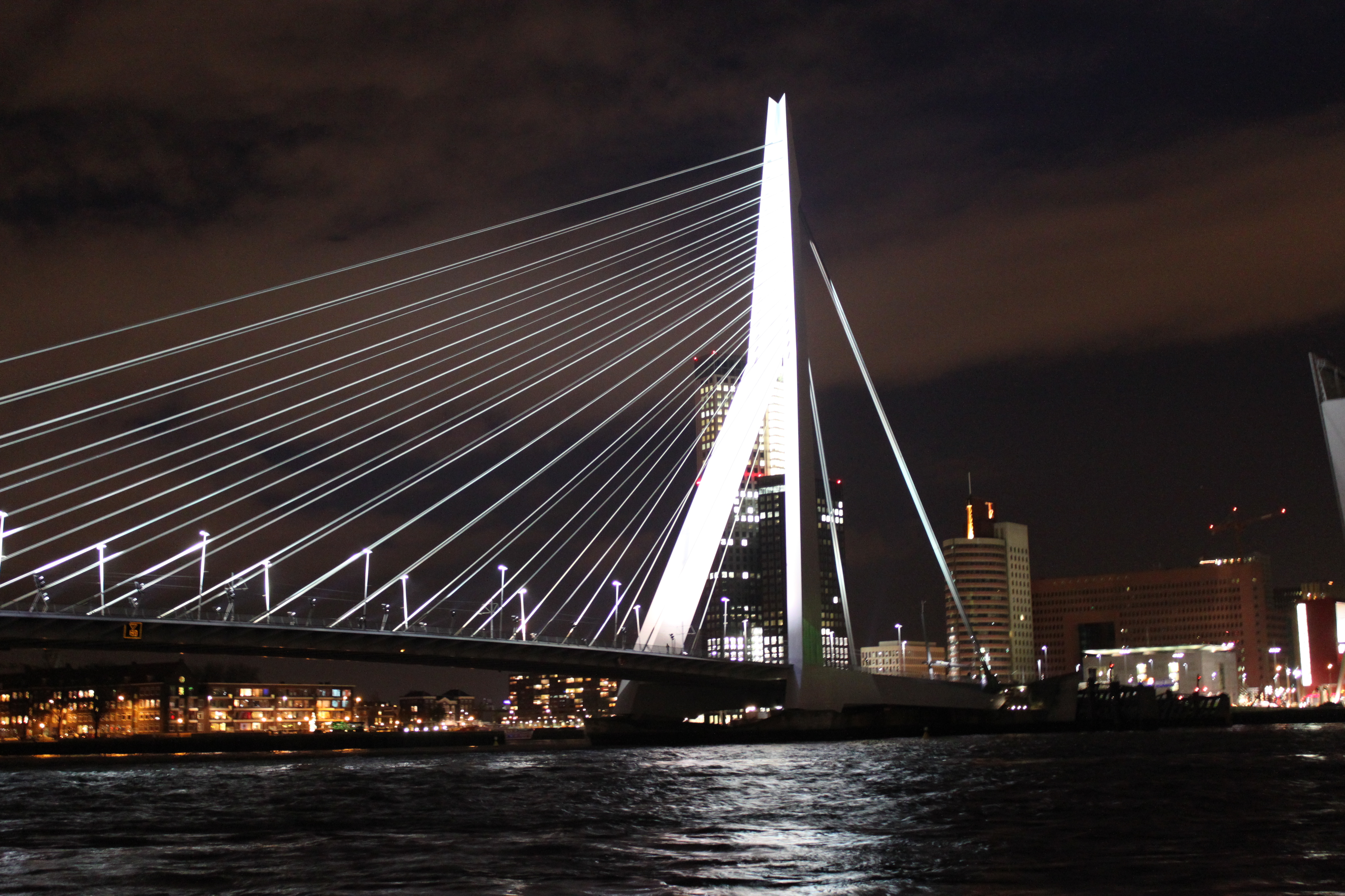 Eyegasms Galore: Rotterdam
